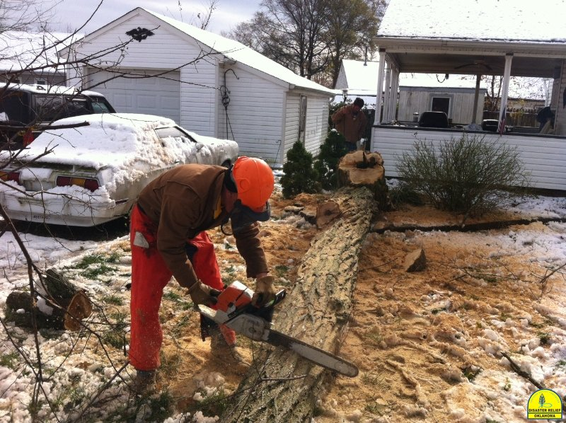 Chainsaw Crew in New Jersey
