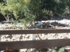 20130928_coloradofloods_steelmanclay_0026