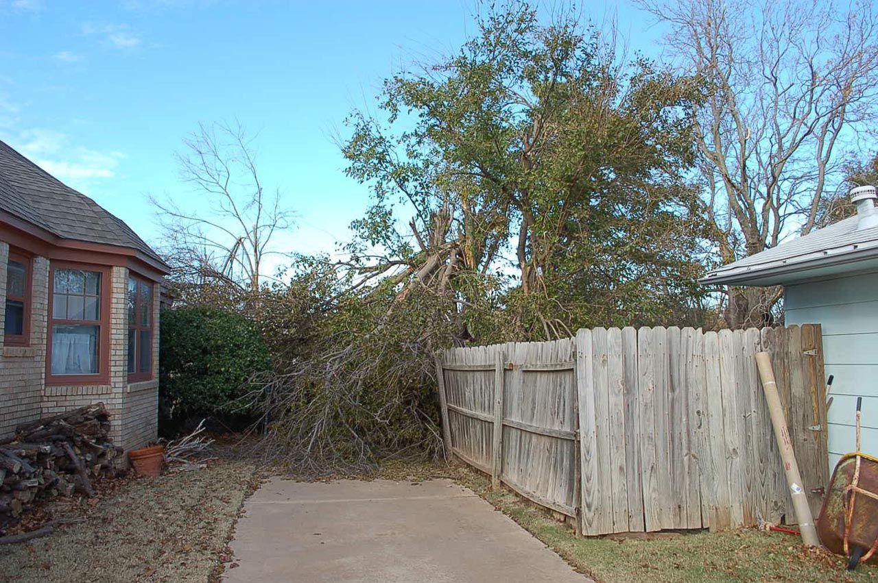storm damage 001_DaveJohnson