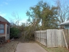 storm damage 001_DaveJohnson