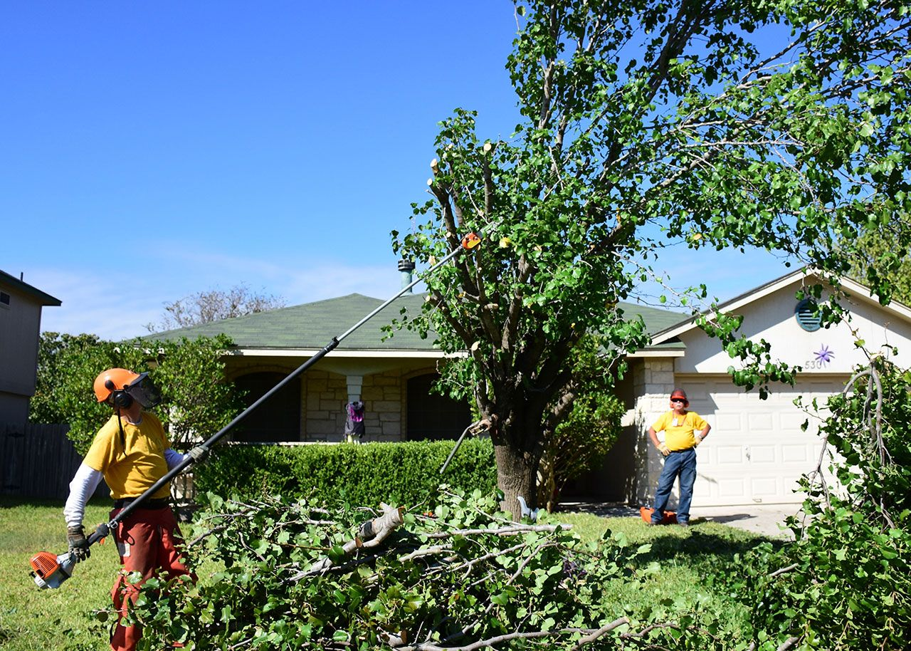2015---Disaster-Relief---Hurricane-Patricia-23011499012