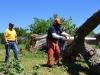 2017---disaster-relief---oklahoma-city-ok_33553701364_o