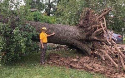 Disaster Relief responds to Aug. 6 Tulsa tornado