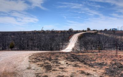 Disaster Relief 'ash-out' crews continue wildfire cleanup